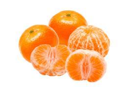 Mandarinka Satsuma střední/velká