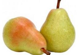 Hrušky odrůda Bon Chretien skládaná