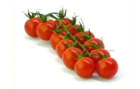 Rajčata Tomino